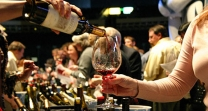 wine tasting guided tours in Granada, Spain