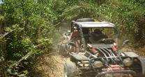 quad and buggy excursions malaga