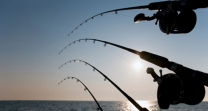 luxury vip fishing costa del sol
